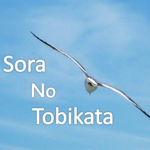 Sora-No-Tobikata~ゆっくりまったりせどりLIFEを楽しむ~